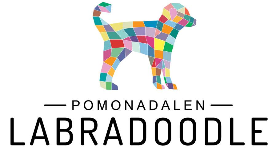 Pomonadalen Labradoodle
